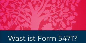 Wast ist Form 5471?