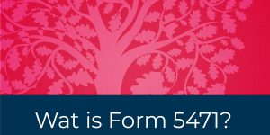 Wat is Form 5471?