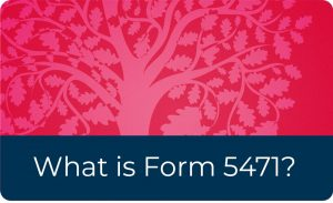 What is Form 5471?